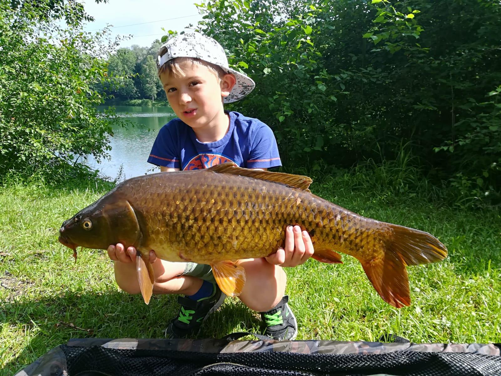 Jannik Röcker, ein schöner Schuppenkarpfen gefangen an unserem See I mit stolzen 7,1kg
